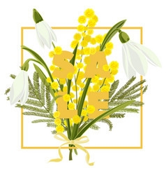 Floral snowdrops and mimosa hand drawn colored vector