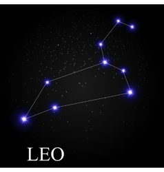 Leo zodiac sign with beautiful bright stars on the vector