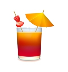 Colourful cocktail with umbrella vector image vector image