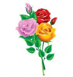 Bouquet of multicolored roses vector