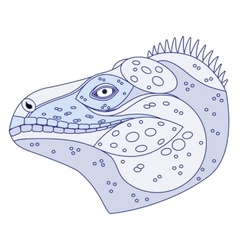 Iguana head stylized vector
