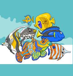 Tropical fish sea life animal characters group vector