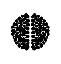 brain human hemispheres think knowledge silhouette vector image