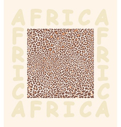 Background texture leopard and with text Africa vector image