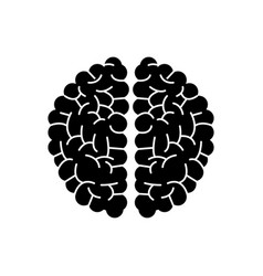Brain human hemispheres think knowledge silhouette vector