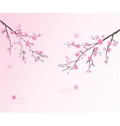 cherry water vector image vector image