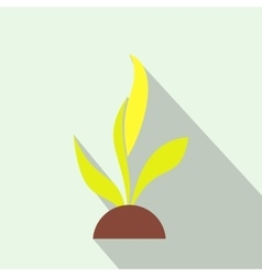 Plant seedling flat icon vector image