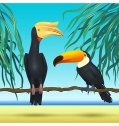 Toco toucan and rhinoceroc bill realistic birds vector image