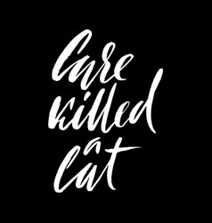 Care killed a cat hand drawn lettering proverb vector