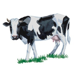 Cow watercolor vector