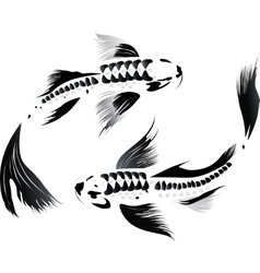 Couple of koi carp vector