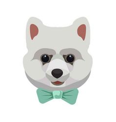 West highland white terrier puppy portrait vector