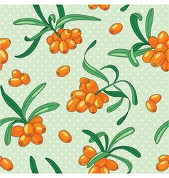 Sea buckthorn seamless pattern vector