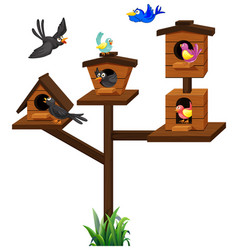 Different types of birds in birdcage vector