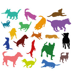 set of colorful dogs silhouettes vector image vector image