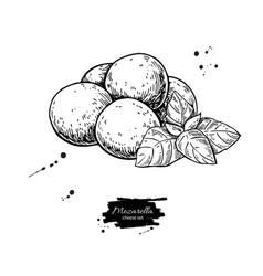 Mozzarella cheese drawing hand drawn baby vector