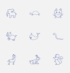set of 9 editable zoology icons includes symbols vector image vector image