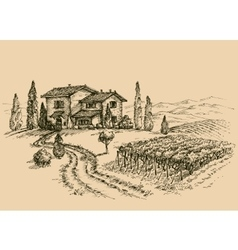 Vineyard drawing traditional farm sketch vector