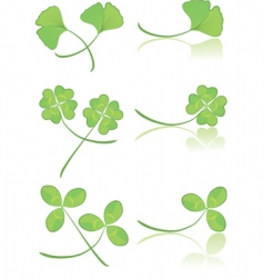 Leaves green vector