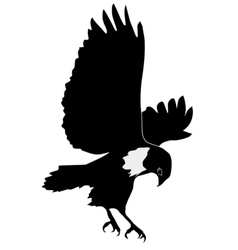 Silhouette of buzzard vector