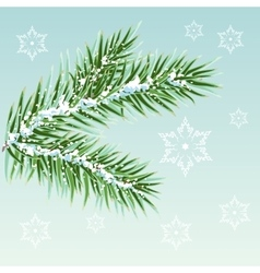 Green Pine branches in the snow vector image