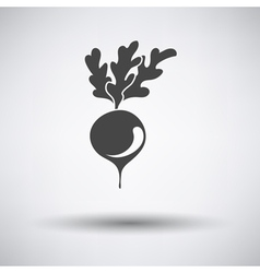 Radishes icon on gray background vector image vector image