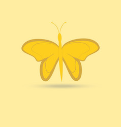 Butterfly isolated object on a yellow background vector