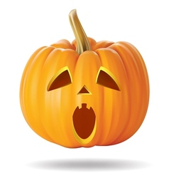 pumpkin sad vector image
