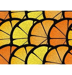 Citrus Pieces Backgound vector image