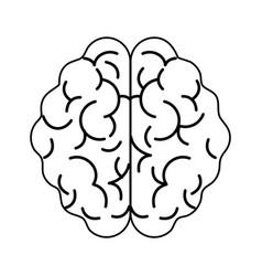 Human brain topview icon imag vector