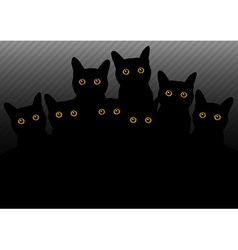 Group of cats in the dark vector
