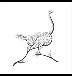 Silhouette of ostrich stylized bushes for use as vector