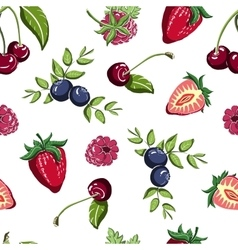 Berrypattern51 vector