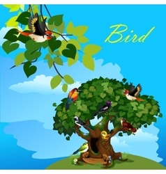 Colorful card with cute birds on the tree vector image