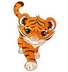 Baby tiger vector image vector image