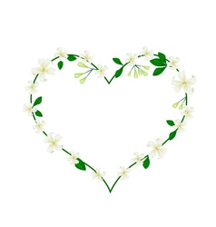 Mock Orange Flowers Flowers in A Heart Shape vector image