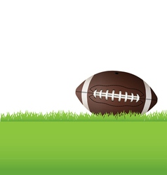 American football sitting in grass vector