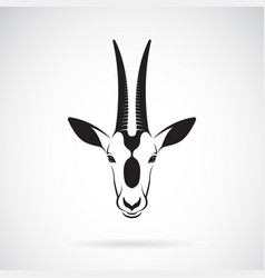 scimitar-horned oryx head design on white vector image