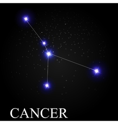 Cancer Zodiac Sign with Beautiful Bright Stars on vector image