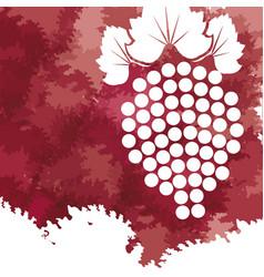 Grape fruit fresh wine image vector