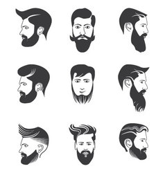 Mens beard and hairstyles vector