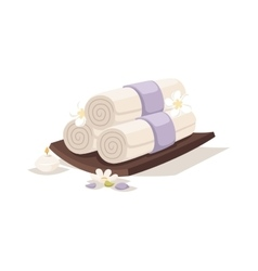 Spa towels aroma vector image