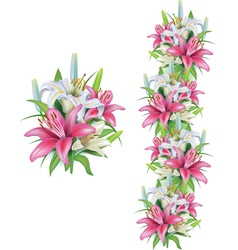 Garlands of lilies flowers vector