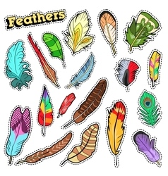 Tribal feathers decorative elements for scrapbook vector