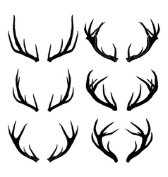 Deer horns collection vector