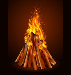 Blazing bonfire inferno fire on wood for outdoor vector