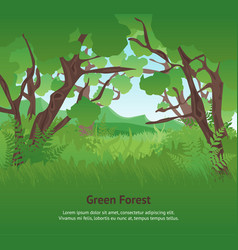 cartoon summer green forest landscape background vector image