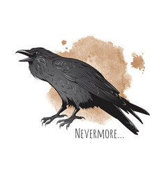 Hand drawn raven on sepia background vector