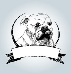 Vintage label with bulldog head vector image