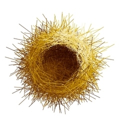 empty birds nest Top view vector image vector image